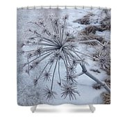 Flower In Winter Shower Curtain