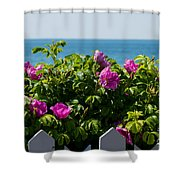 Flower Island View Shower Curtain