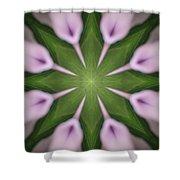Flower Kaleidoscope_003 Shower Curtain