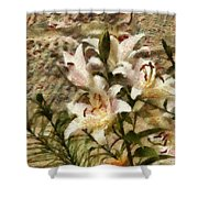 Flower - Lily - White Lily Shower Curtain