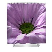 Flower Macro Beauty 3 Shower Curtain