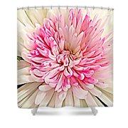 Flower Macro. Shower Curtain