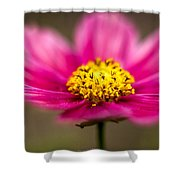 Flower Macro Shower Curtain