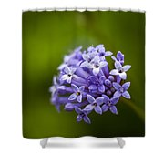 Flower Macro Shower Curtain