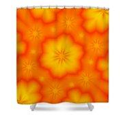 Flower Mandala 5 Shower Curtain