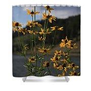 Flower Mountain View Shower Curtain