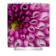 Flower No. 4 Shower Curtain