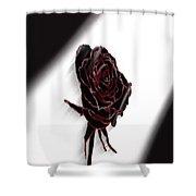 Flower No.1 Shower Curtain