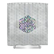 Flower Of Life Abalone Shell On Pearl Shower Curtain