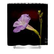 Flower On The Vine Shower Curtain