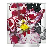 Flower Orchid 11 Elena Yakubovich Shower Curtain