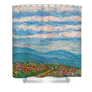 Flower Path To The Blue Ridge Shower Curtain