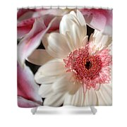 Flower Pink-white Shower Curtain