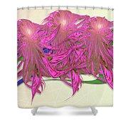 Flower Plant Shower Curtain
