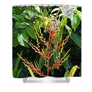 Flower Plants Shower Curtain