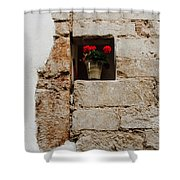 Flower Pot In Niche Shower Curtain