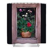 Flower Pot In Window Shower Curtain