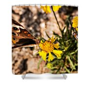 Flower Power Bug And Butterfly Shower Curtain