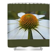 Flower Power Sacred Geometry Shower Curtain