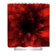 Flower  Red Shade Shower Curtain