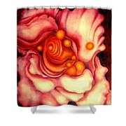 Flower Shell Shower Curtain