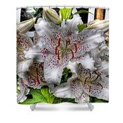 Flower Shop Lillies Shower Curtain