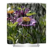 Nourish Me Shower Curtain