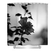 Flower Silhouette Shower Curtain