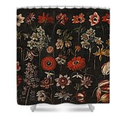 Flower Studies Shower Curtain