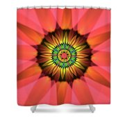 Flower Translucent 14 Shower Curtain