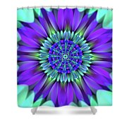 Flower Translucent 19 Shower Curtain
