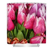 Flower - Tulip - A Young Girls Delight Shower Curtain