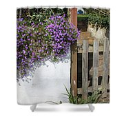 Flower Wall Shower Curtain