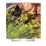 Flower Wood And Rock Shower Curtain
