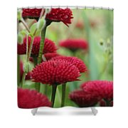 Flower1 Shower Curtain