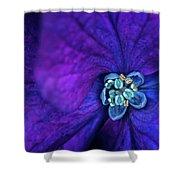 Flower5 Shower Curtain