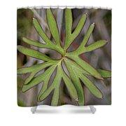 Flowerantlers Shower Curtain