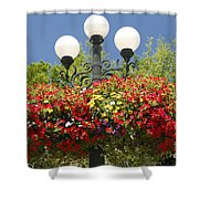 Flowered Lamppost Shower Curtain