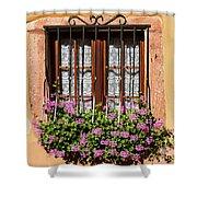 Flowered Window # II Shower Curtain