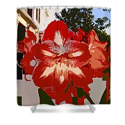 Flowering Backyard Work Number 33 Shower Curtain