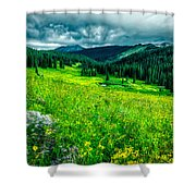 Flowering Colorado Mountain Meadow Shower Curtain