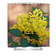 Flowering Plant 032514a Shower Curtain
