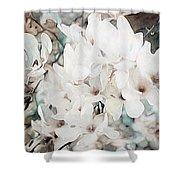 Flowering Star Magnolia Shower Curtain