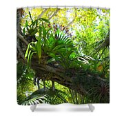 Flowering Twisted Roots Shower Curtain