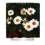 Flowering Yew Shower Curtain
