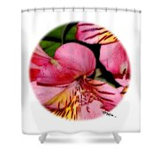 Flowers # 8728_2 Shower Curtain