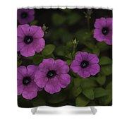 Flowers 3 Shower Curtain