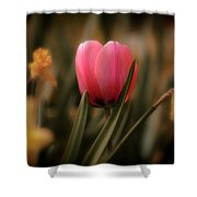 Flowers 32 Shower Curtain