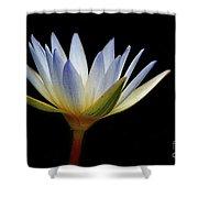 Flowers 44 Shower Curtain