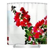 Flowers 5 Shower Curtain